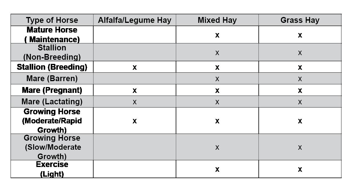 Hay-101-table-1