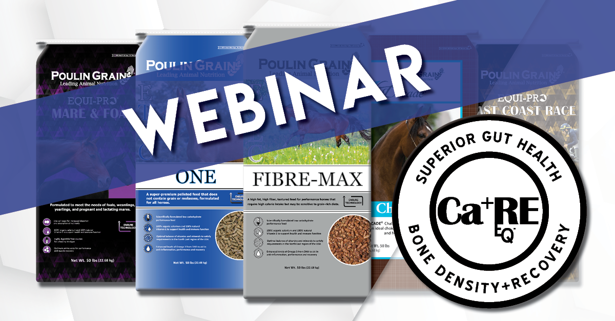 Ca⁺RE EQ™ Webinar