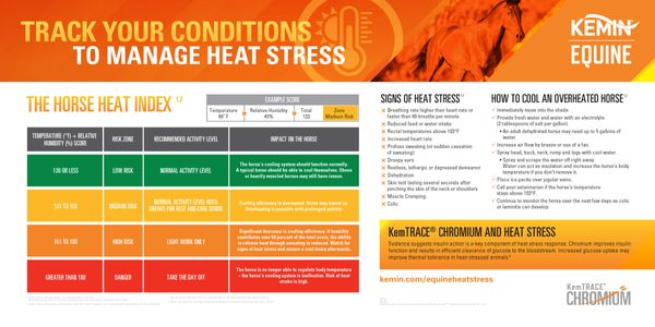 Chromium and Equine Heat Stress